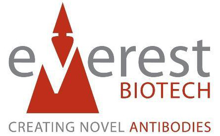 Everest Biotech