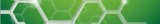 Alexa Fluor® 488 conjugated Antibodies