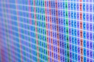 Sanger Sequencing cleanup