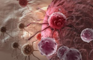 Circulating Tumour Cell Stabilisation