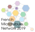 4th French microtubule network meeting
