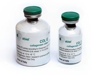 Test our high purity recombinant collagenases