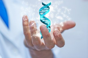 SIBBM 2019 - Frontiers in Molecular Biology