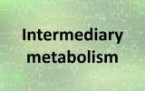 Assay kits - Intermediary metabolism