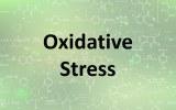 Assay kits - Oxidative stress