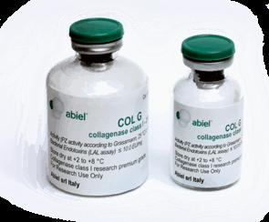 Testez nos nouvelles collagénases recombinantes