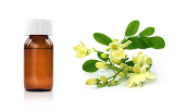 Lectine Moringa oleifera (cMOL)