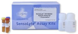 Protease assay kits