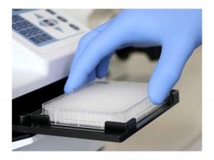 Nouvelle µ-plate 384 puits pour la microscopie