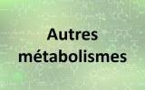 Autres métabolismes