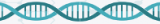 Mix SYBR Green High ROX pour RT-qPCR