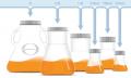 Flacons pour la production de protéines