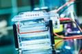 ELITE Protein Ladder : changez vos standards !