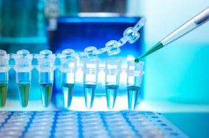 Réactif pour la purification des produits de PCR