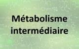 Kits de dosage - Métabolisme intermédiaire