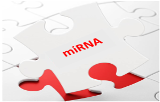 miRNA