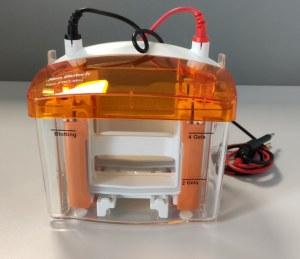 NeoPRO : Nouveau mini système d'électrophorèse vertical