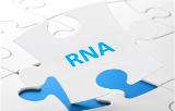 Extraction de l'ARN
