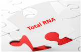 Extraction et purification d'ARN totaux